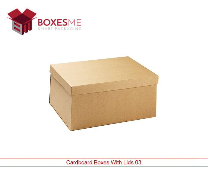 Cardboard Boxes Wholesale Lid.jpg